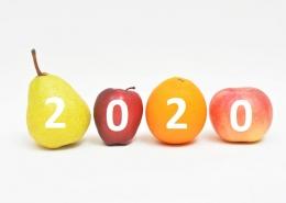 fogyókúra 2020